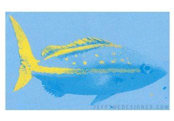 Yellowtail Snapper Illustration (Silkscreen Print)