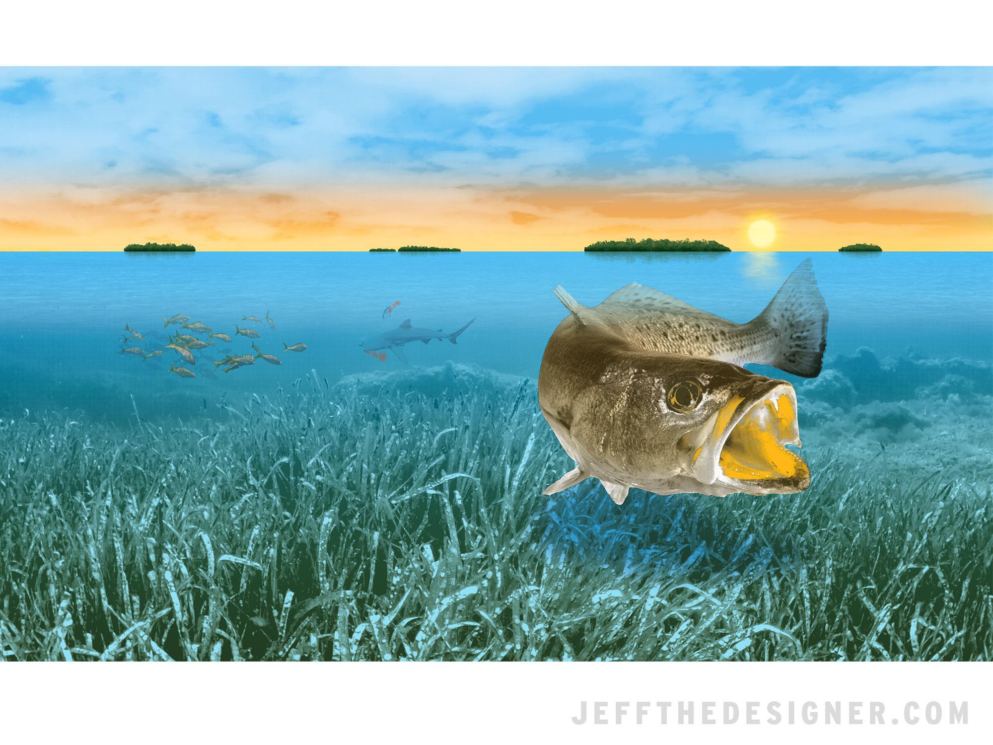 Speckled Trout Fishing Shirt Illustration - jeffthedesigner.com